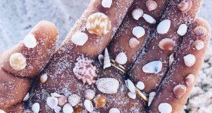 These itty bitty shells speak my