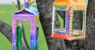 Birdhouse Crafts for Kids