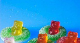 Teddybär-Imbiss-Ideen, zum dich zu begeistern und zu erfreuen