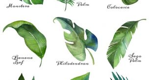 Tropical Leaf Free Printable Art {Series of 9