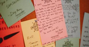 Wes Anderson 024-letters from camp